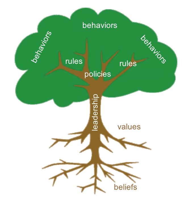 The Culture Tree: Changing culture requires changing the roots, not just the leaves and branches.